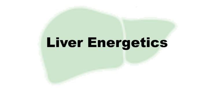 Liver-Energetics