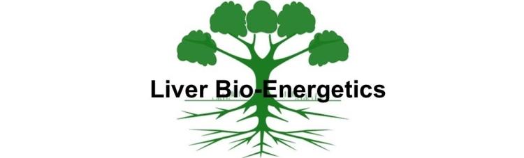 Spring-Liver-Bio-Energetics-050920-A1